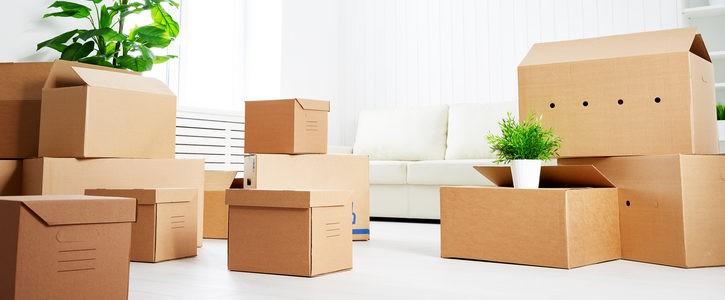 le guide de l 39 expulsion du locataire d 39 un bail commercial qui ne paye pas. Black Bedroom Furniture Sets. Home Design Ideas