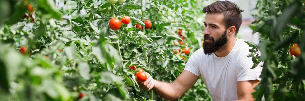 Contrat de prestation de service agricole : tout ce qu'il faut savoir