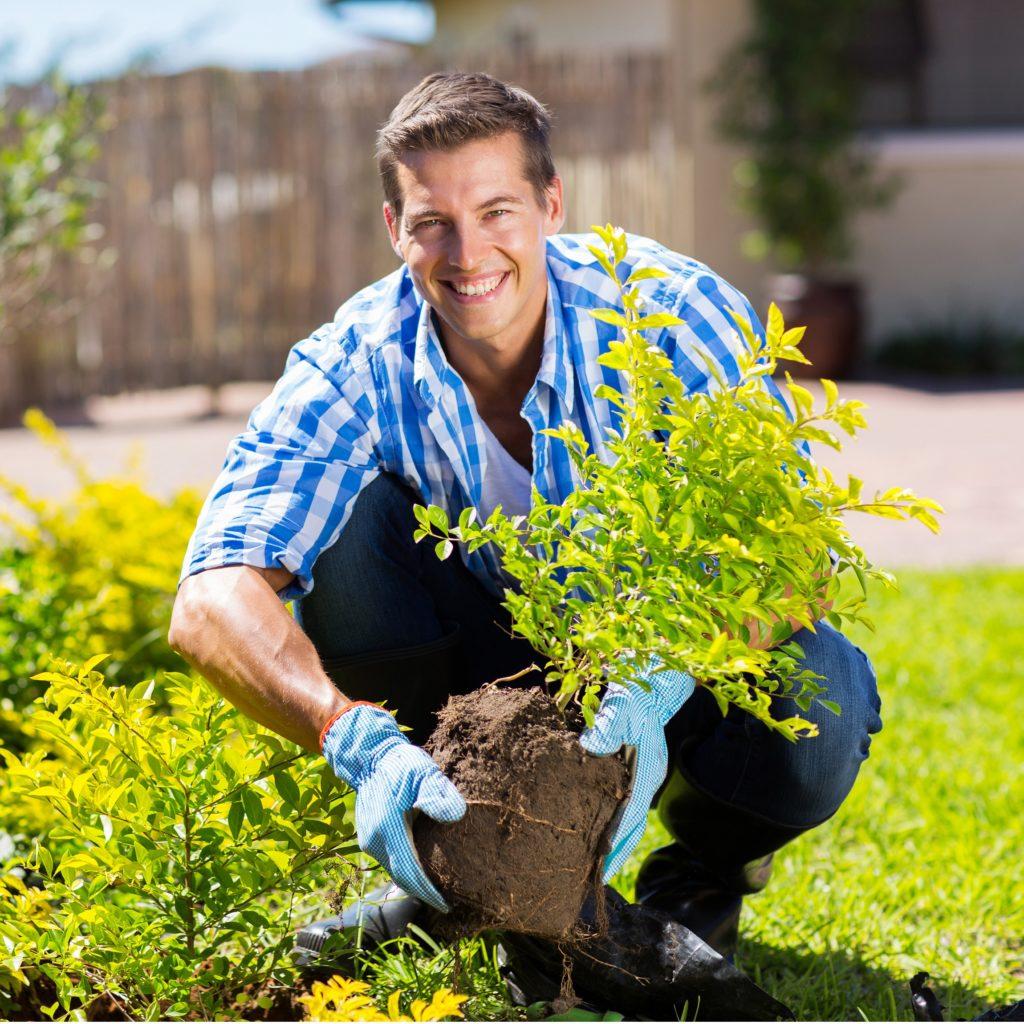 Trouver Un Jardinier A Domicile devenir auto-entrepreneur en jardinage : mode d'emploi